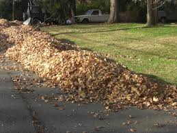 No more stress about bagging and disposing of those giant piles. Call Foley Landscape Services for a free estimate on a fall cleanup today!